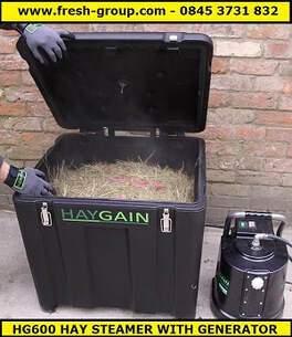 hay steamer hg600 with generator